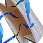 Punga-cadou-panglica-albastra