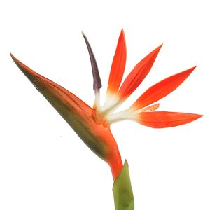 Floare artificiala Strelitzia