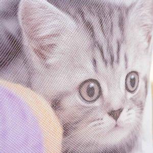 Portfard multicolor design pisica