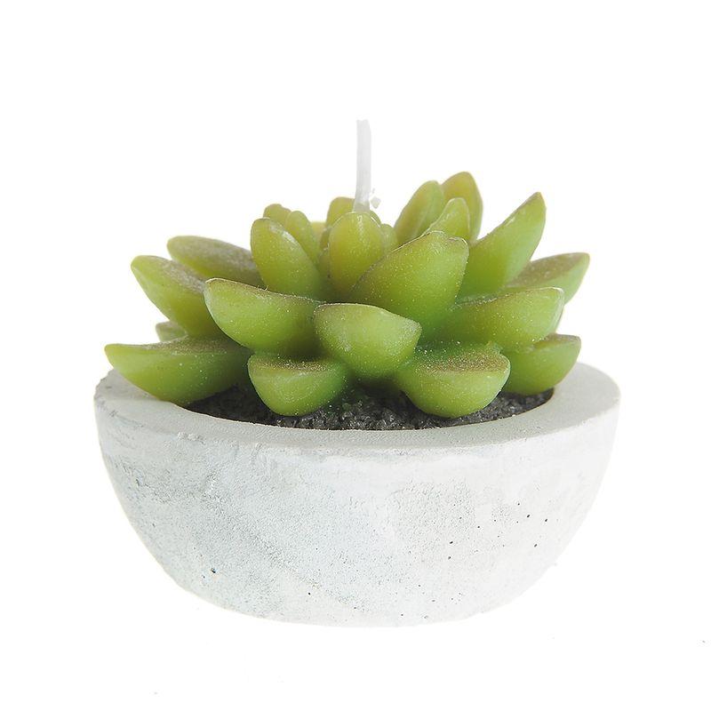 Lumanare-floare-cactus