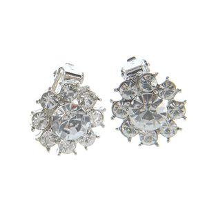 Cercei cu floare argintie